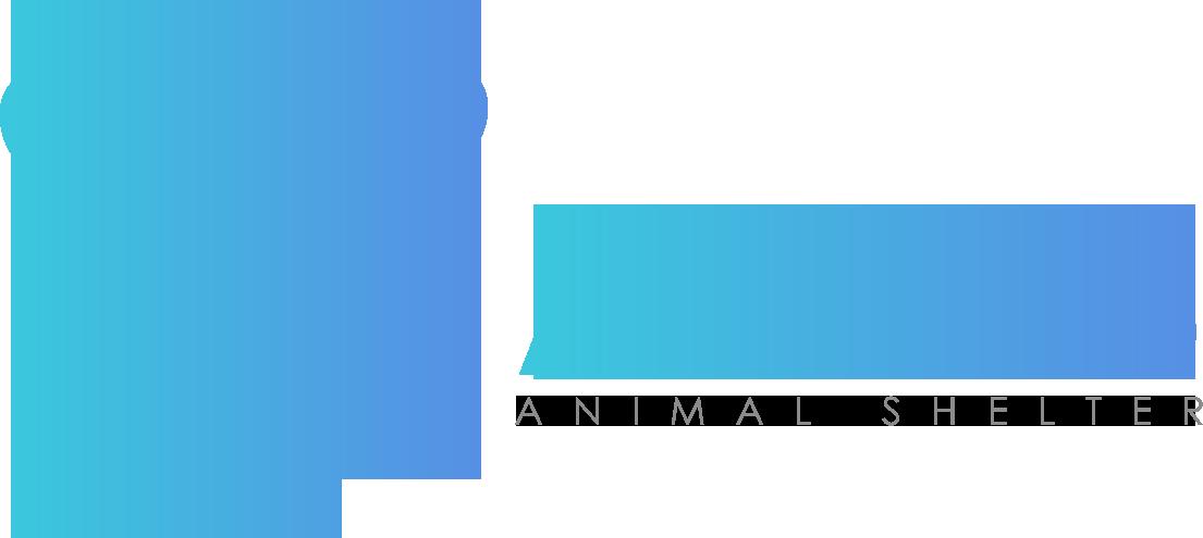 Amos Shelter